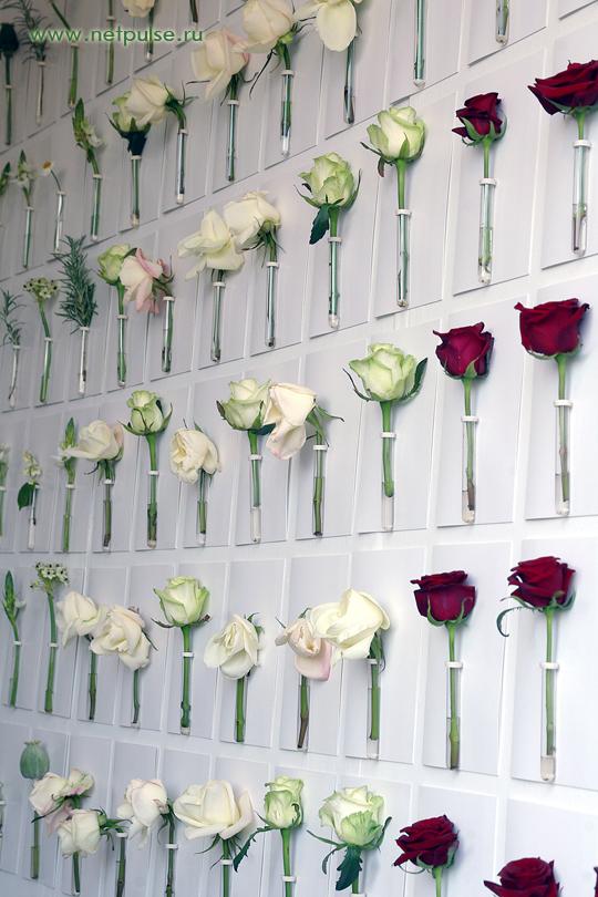 Сад цветов уникальный сад цветов